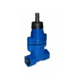 Evopipes flanged industrial vertical valve, A-type, DN40, FF, PN16, K14