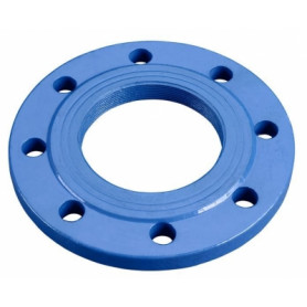 Norson Sp. Z.o.o industrial end flange, with thread, DN50, 2, 1-252 050 050 11