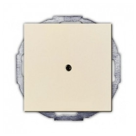 ABB Busch Jaeger empty space cover plate Basic55, beige, 2CKA001715A0313