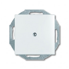 ABB Busch Jaeger empty space cover plate Basic55, white, 2CKA001715A0312