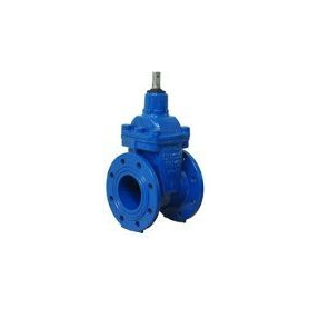 Cast iron industrial vertical valve with rubber wedge Dn65 Pn16, K17, Akwa