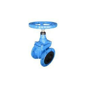 Cast iron industrial vertical valve with rubber wedge Dn80 Pn16, K14 Blucast